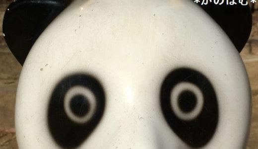 【パンダの目つきがやばい】公園の遊具がシュールすぎる問題